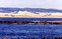 Looking across to the mainland at Woody Cape